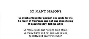 So Many Seasons